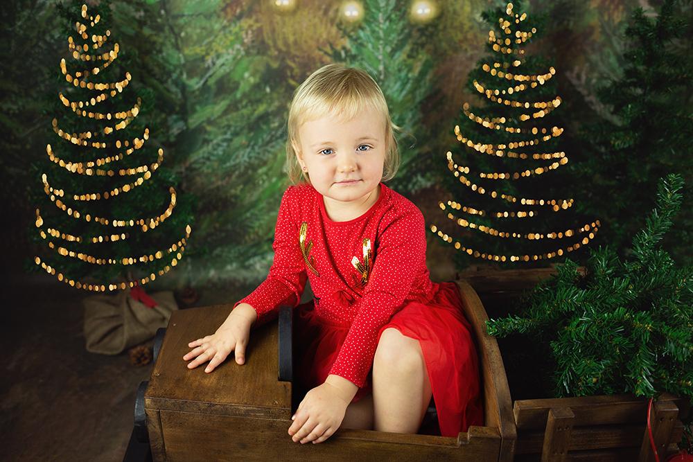 Božično fotografiranje - Mali srčki 28