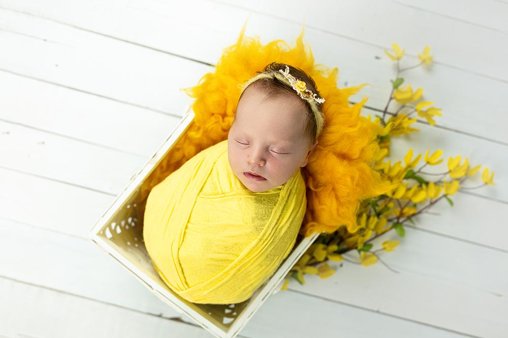 Mali srčki - Fotografiranje novorojenčka 0